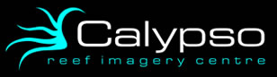 Calypso Reef Imagery